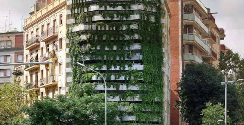 Jardim vertical em edifício na Espanha